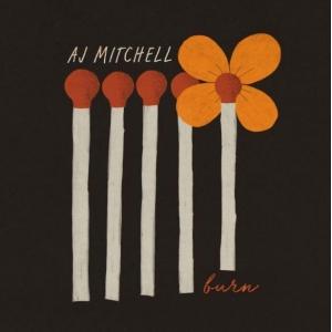 AJ Mitchell Burn