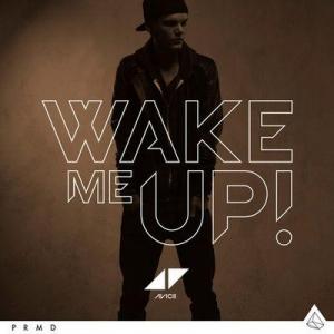 Avicii & Aloe Blacc Wake Me Up