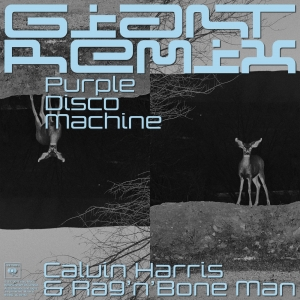 Calvin Harris ft. Rag'N'Bone'Man Giant [Purple Disco Machine Remix]